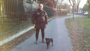 Dog Sitter Sitter Piave EMMA